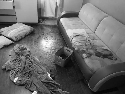 Sprzątanie po zgonie